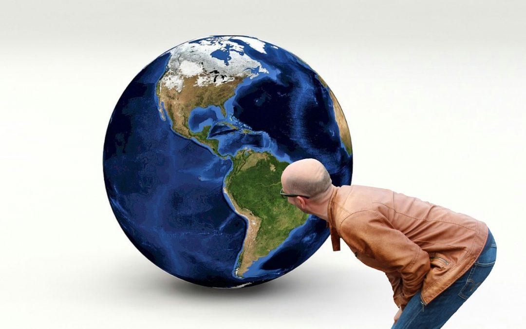 Die Erde wird grüner